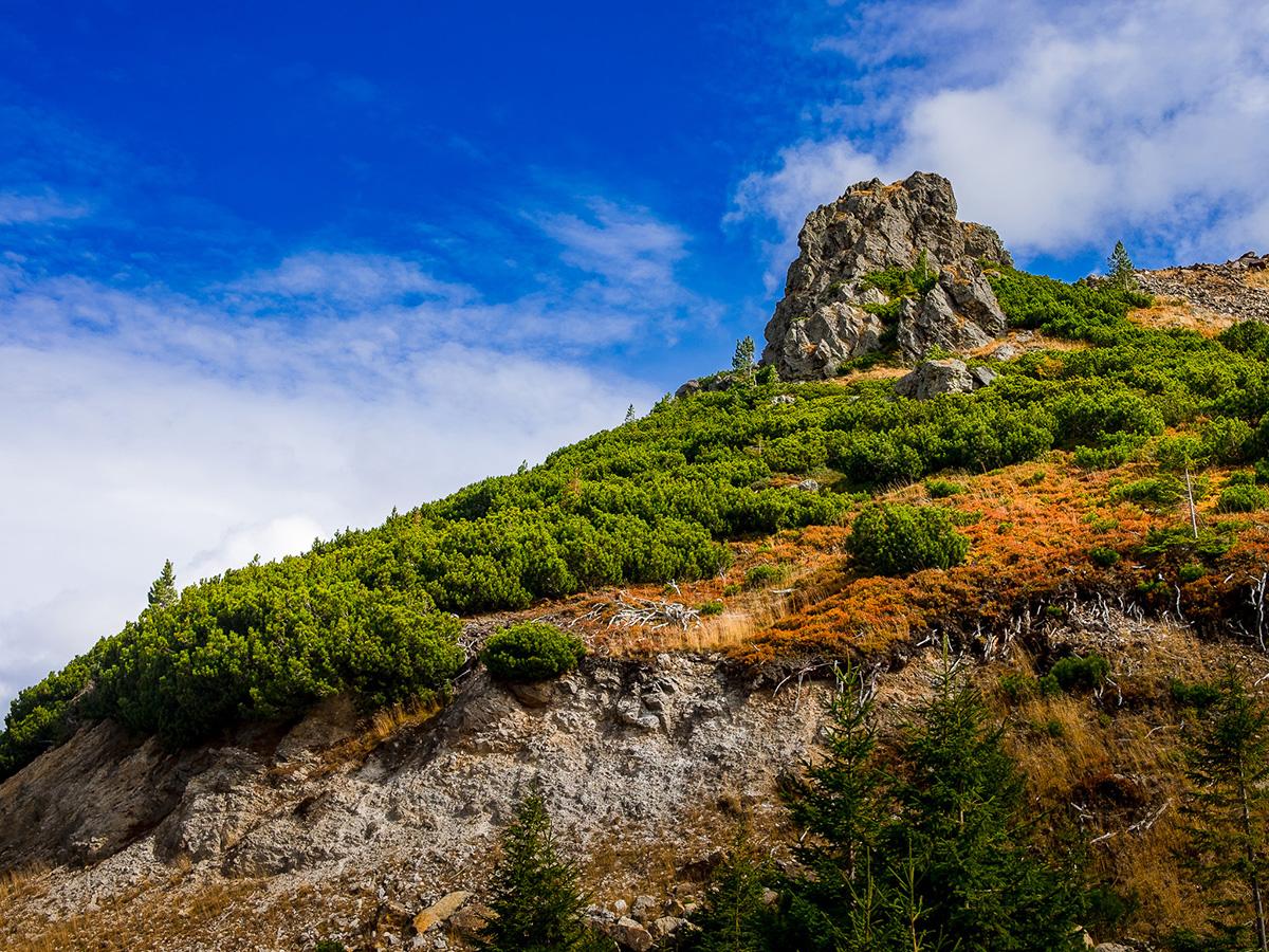 #15 Haihui - Parcul Național Călimani