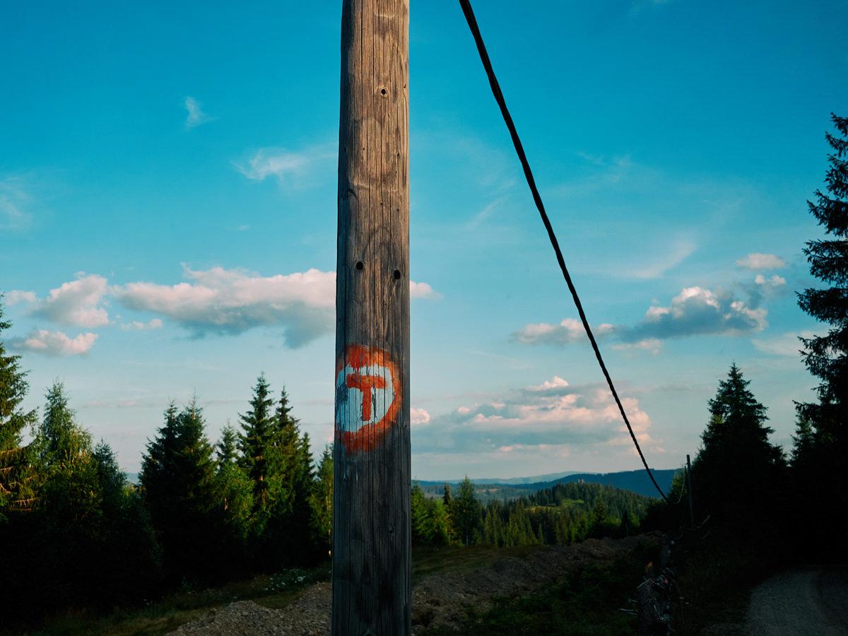 #30 Via Transilvanica - Sadova - Pasul Mestecăniș