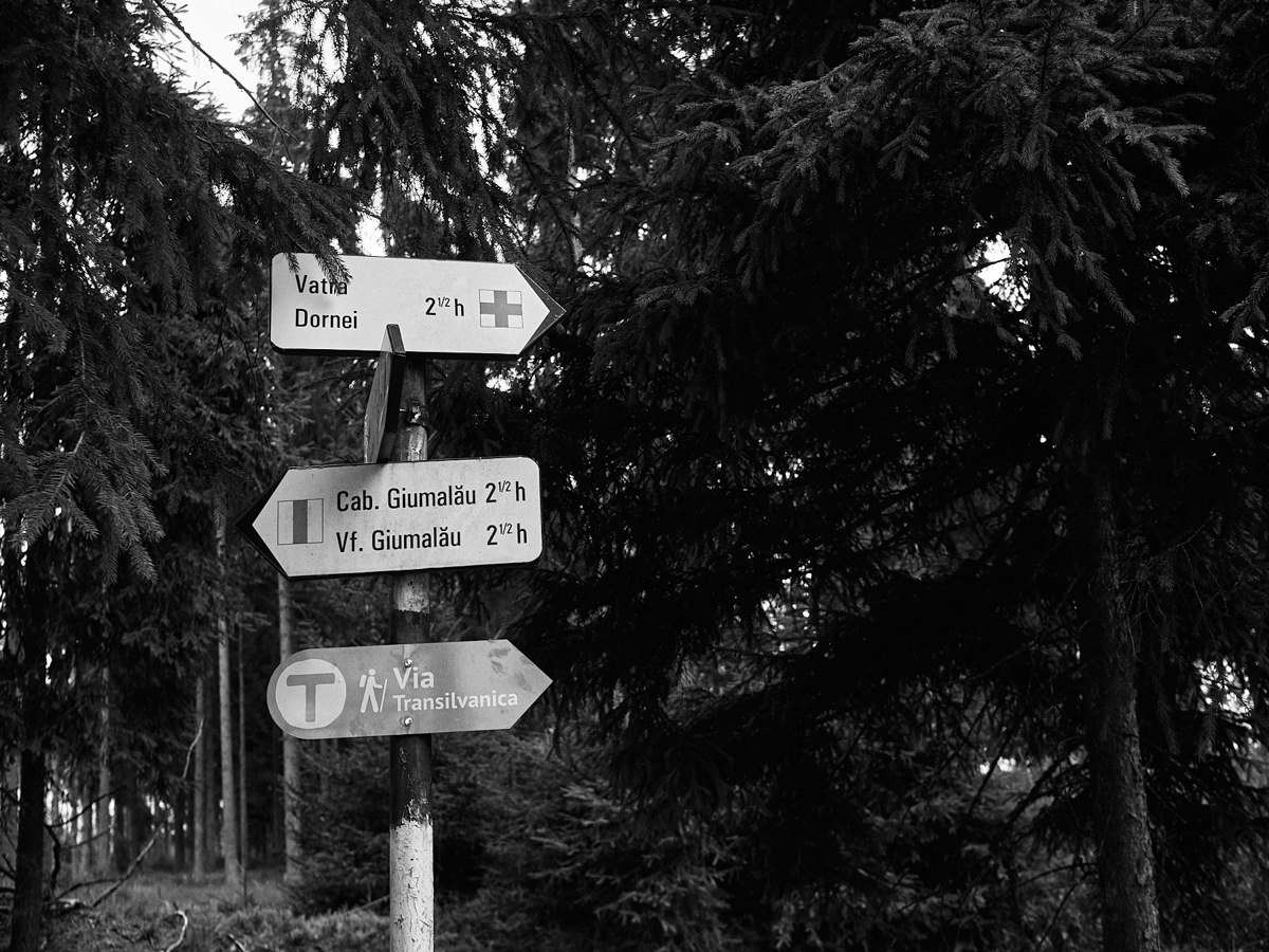 #32 Via Transilvanica - Pasul Mestecăniș - Vatra Dornei