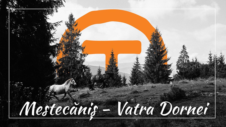 #32 Via Transilvanica – Pasul Mestecăniș – Vatra Dornei (videoclip)